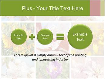 Beautiful flowers PowerPoint Template - Slide 75