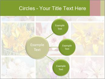 Beautiful flowers PowerPoint Template - Slide 79