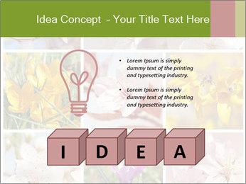 Beautiful flowers PowerPoint Template - Slide 80