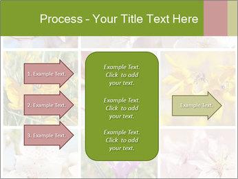 Beautiful flowers PowerPoint Template - Slide 85