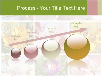 Beautiful flowers PowerPoint Template - Slide 87