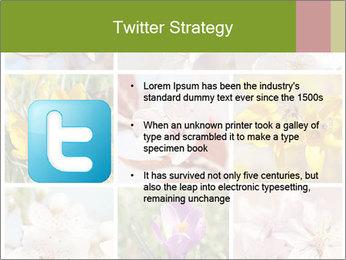 Beautiful flowers PowerPoint Template - Slide 9
