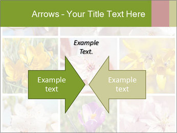 Beautiful flowers PowerPoint Template - Slide 90