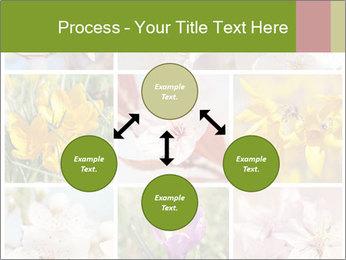 Beautiful flowers PowerPoint Template - Slide 91