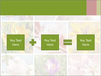 Beautiful flowers PowerPoint Template - Slide 95