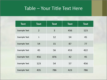 Thailand Golf Championship PowerPoint Templates - Slide 55