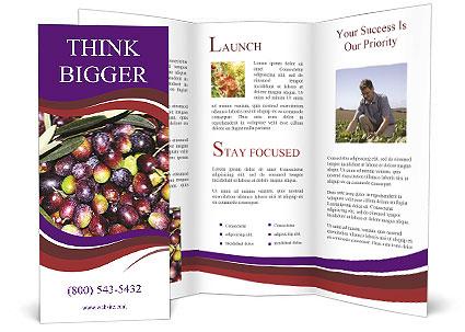 0000093000 Brochure Templates
