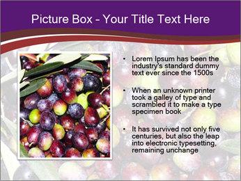 Freshly harvested PowerPoint Templates - Slide 13