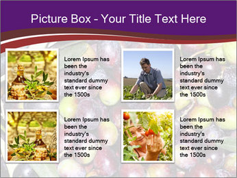 Freshly harvested PowerPoint Templates - Slide 14