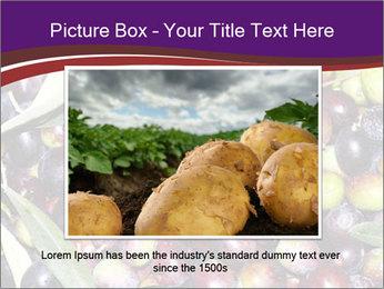 Freshly harvested PowerPoint Templates - Slide 16