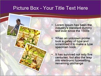 Freshly harvested PowerPoint Templates - Slide 17