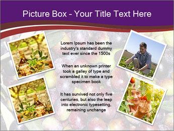 Freshly harvested PowerPoint Templates - Slide 24
