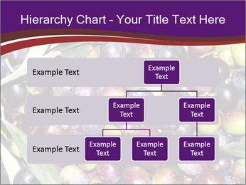 Freshly harvested PowerPoint Templates - Slide 67