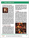 0000093002 Word Template - Page 3