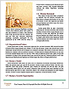 0000093002 Word Template - Page 4