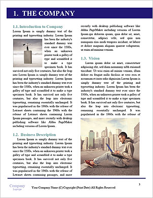 0000093003 Word Template - Page 3