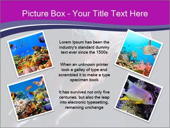 Mauve stinger PowerPoint Template - Slide 24