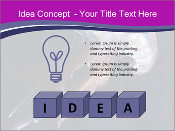 Mauve stinger PowerPoint Template - Slide 80