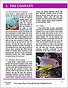 0000093010 Word Template - Page 3