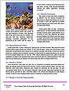 0000093010 Word Template - Page 4