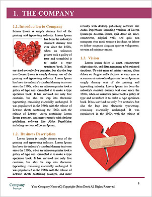 0000093011 Word Template - Page 3
