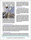 0000093017 Word Templates - Page 4