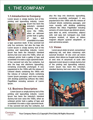 0000093019 Word Template - Page 3