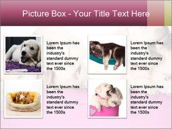 Labrador retriever puppies PowerPoint Templates - Slide 14