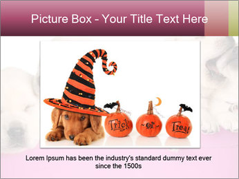 Labrador retriever puppies PowerPoint Templates - Slide 16