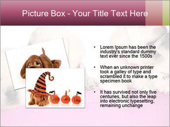 Labrador retriever puppies PowerPoint Templates - Slide 20