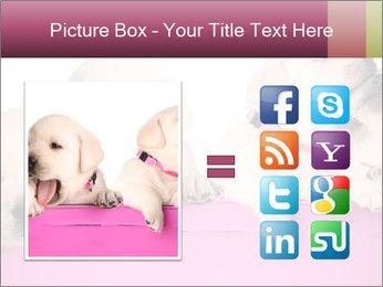 Labrador retriever puppies PowerPoint Template - Slide 21