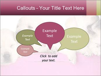 Labrador retriever puppies PowerPoint Templates - Slide 73