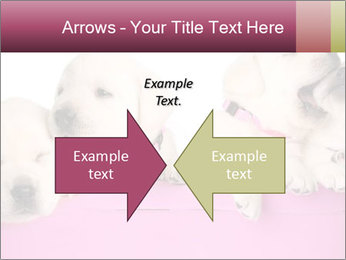 Labrador retriever puppies PowerPoint Templates - Slide 90
