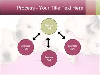 Labrador retriever puppies PowerPoint Templates - Slide 91