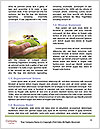 0000093030 Word Templates - Page 4
