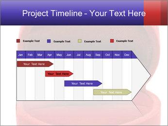 Luxury Diamond PowerPoint Templates - Slide 25