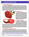 0000093031 Word Templates - Page 8