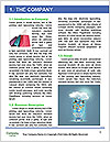 0000093035 Word Template - Page 3