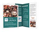 0000093039 Brochure Template