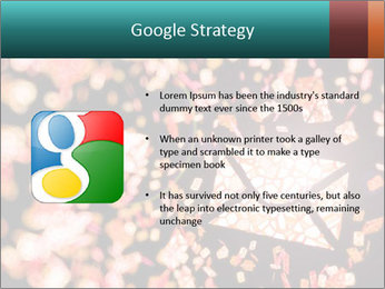 SMS collection PowerPoint Template - Slide 10