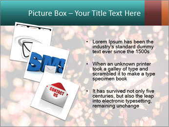 SMS collection PowerPoint Template - Slide 17