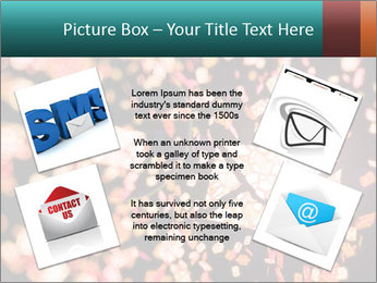 SMS collection PowerPoint Template - Slide 24