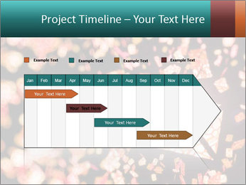 SMS collection PowerPoint Template - Slide 25