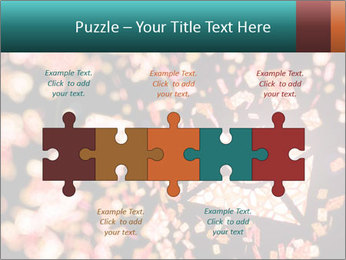 SMS collection PowerPoint Template - Slide 41