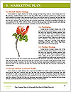 0000093041 Word Templates - Page 8