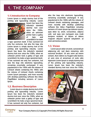 0000093042 Word Template - Page 3