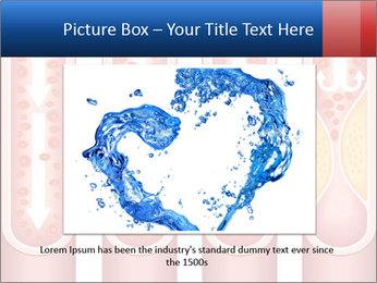 Vienna human atherosclerosis PowerPoint Template - Slide 16