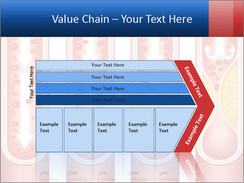 Vienna human atherosclerosis PowerPoint Template - Slide 27