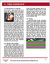 0000093062 Word Template - Page 3