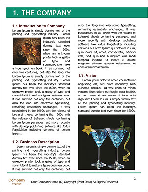 0000093065 Word Template - Page 3